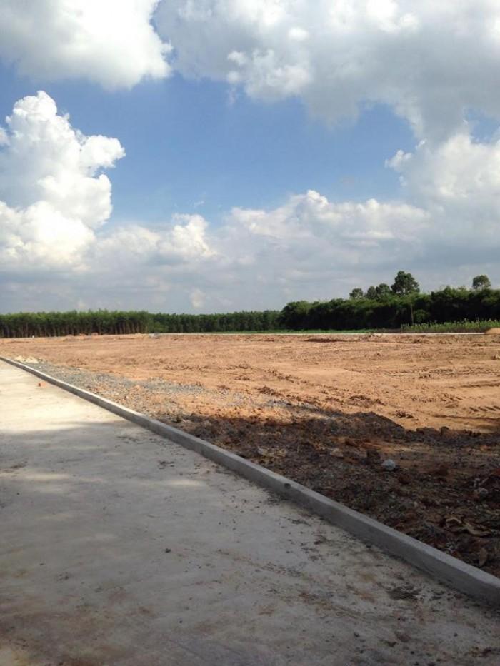 Bán gấp đất Thổ Cư 100m2 Bưng Cơ- Lộc An có sổ hồng riêng chính chủ