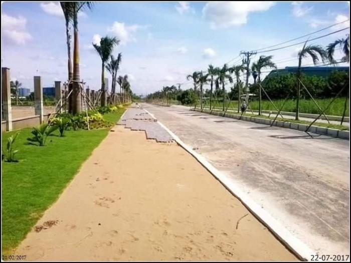 Đất nền dự án liền kề trung tâm thương mại cụm khu công nghiệp và khu tái định cư sân bay quốc tế long thành