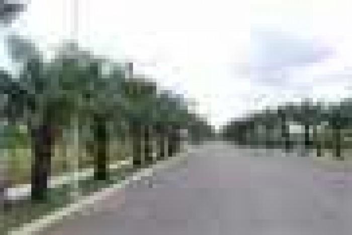 Đất nền KĐT Cát Lái Investco Q2 thổ cư 100% mt đường rộng 40m giá ưu đãi 595tr TT 50% góp 6 tháng 0