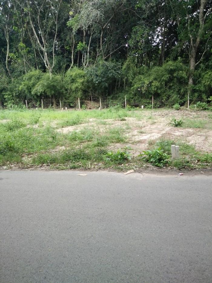 Nền mặt tiền đường DX64 phường Định Hòa TP.Thủ Dầu Một, Bình Dương gia rẻ