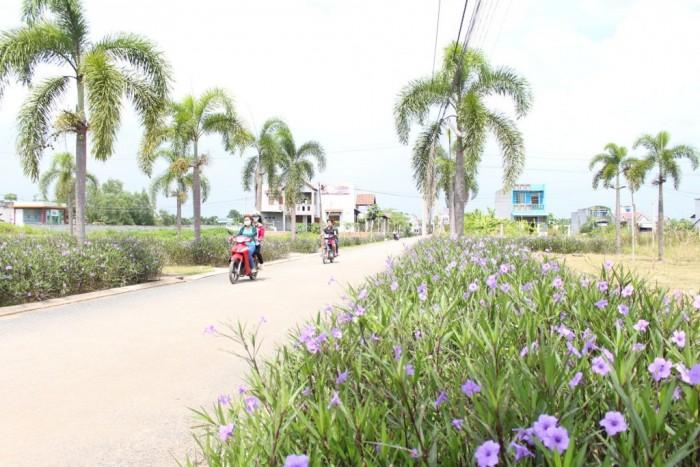 Đất thị trấn Bến Lức chuyên xây trọ, kinh doanh ngay KCN Thuận Đạo