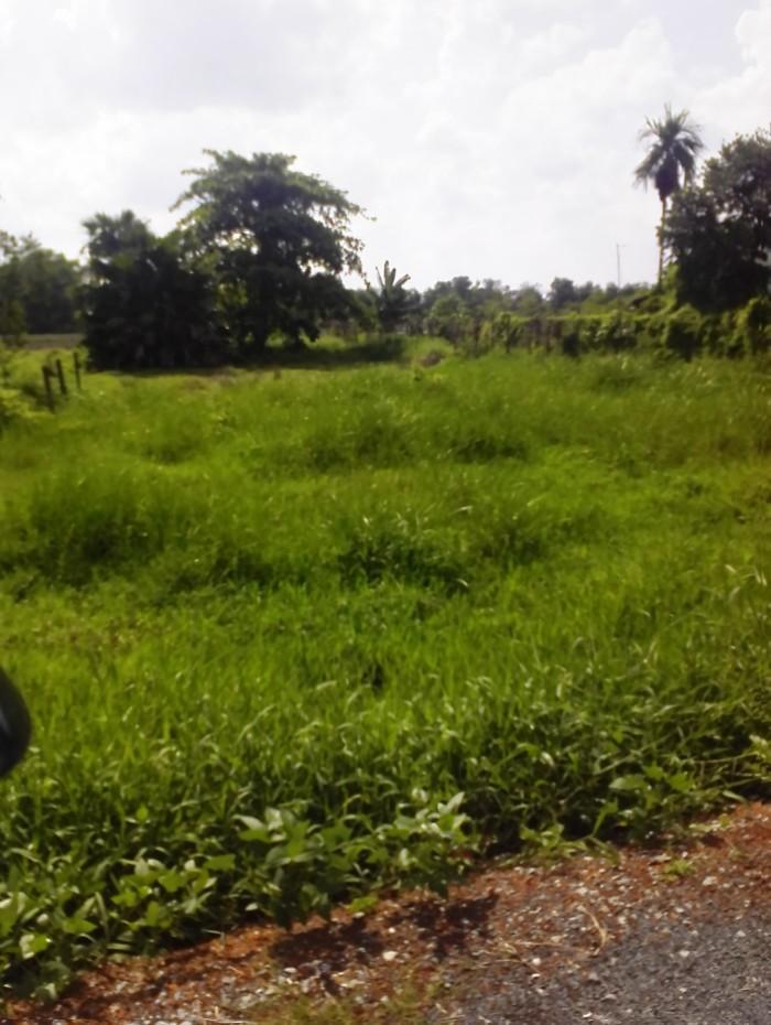Đất  Bình Chánh,1170 m2 đường 4C, giá 2,85tỷ, đất đẹp, chính chủ, SHR