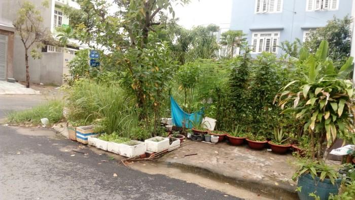 Đất tc mt đường Đoàn Nguyễn Tuấn có shr xdtd số 238/4