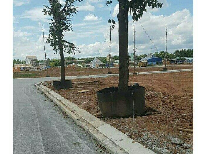 Đất nền dự án,CSHT hoàn thiện Phú hữu Q2