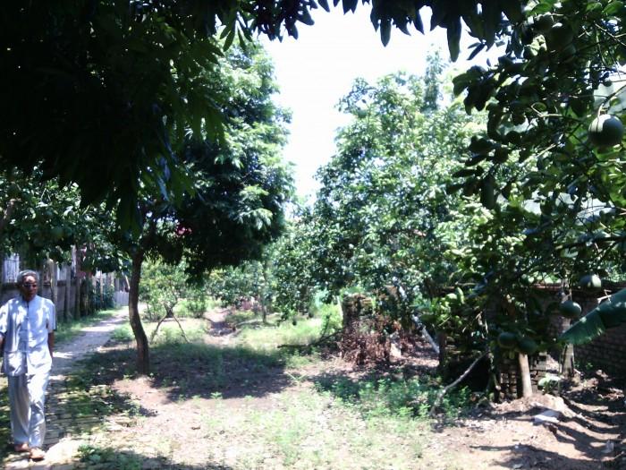 Bán đất thôn Đồng Cao, xã Tráng Việt, Mê Linh, Hà Nội, 1020m2, giá 3 triệu/m2
