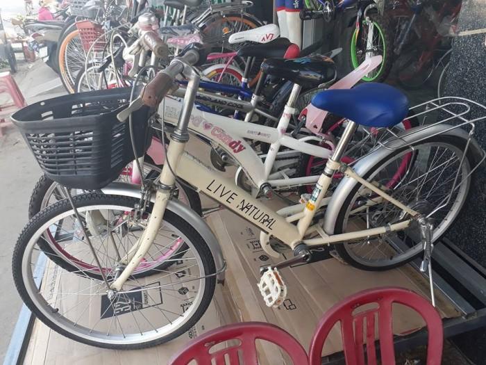 Xe đạp thiếu nhi Live Natural (Nhật )