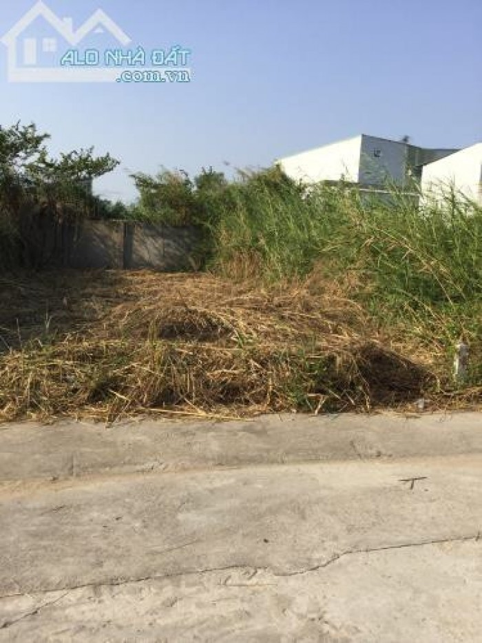 Bán Gấp Đất Thổ Cư 300 m2 (15x20m) Giá 3 Tỷ, Shr, Đường Xe Hơi, Lê Văn Lương, Kdc Tân Thuận, Nhà Bè