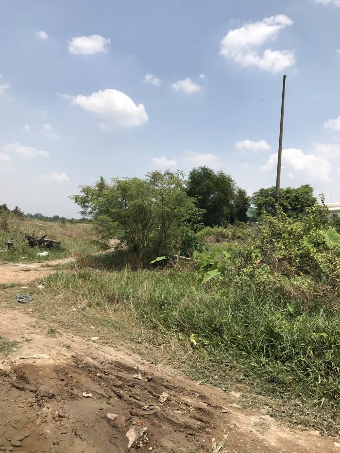 Cần bán gấp đất nông nghiệp xã T.T.Đông- Củ Chi, DT 7500m2, giá 2,7 triệu/1m2
