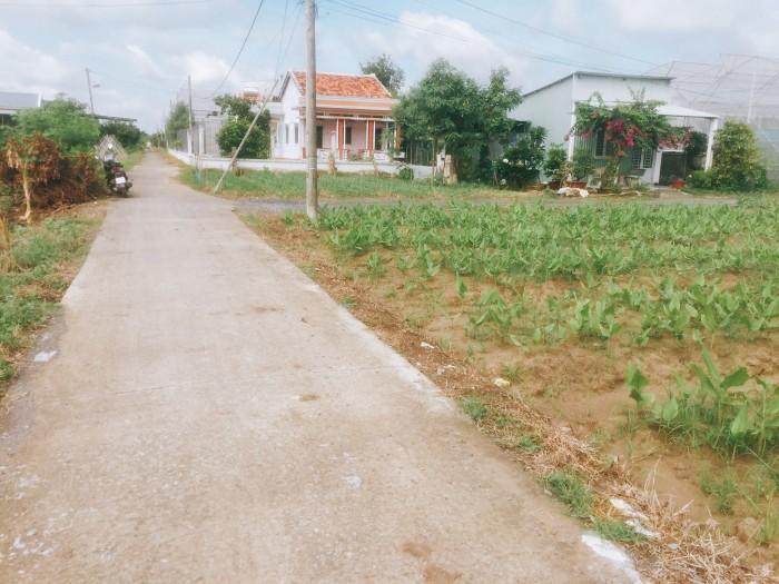 Bán đất mặt tiền đường T14 xã Hưng Long huyện Bình Chánh