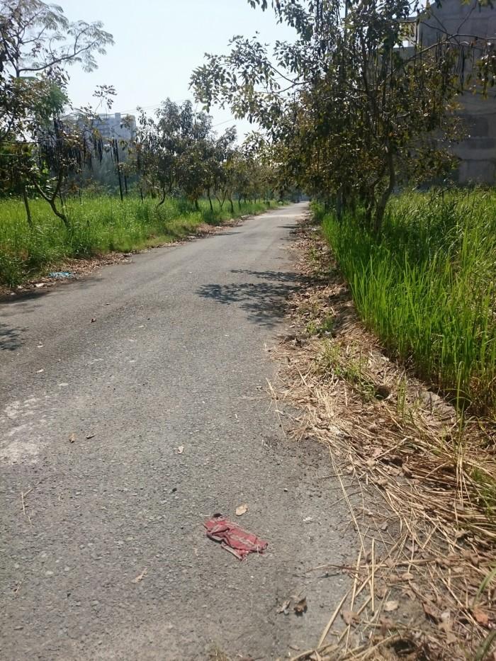 Đất nền biệt thự khu Greenlife 13C MT Nguyễn Văn Linh, 270m2, lô F