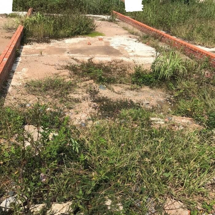 Mặt tiền Dương Đình Hội, 100m2, gần chợ, gần trường