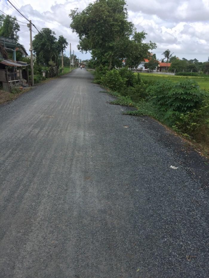 Cần sang lại 6600 m2 mặt tiền đường xe công, Hưng Long, Bình Chánh.