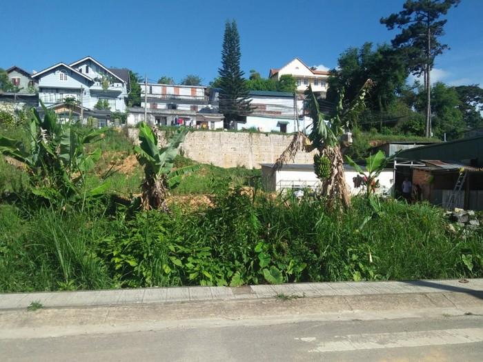 Bán đất đẹp, view đồi thông gần trung tâm thành phố Đà Lạt