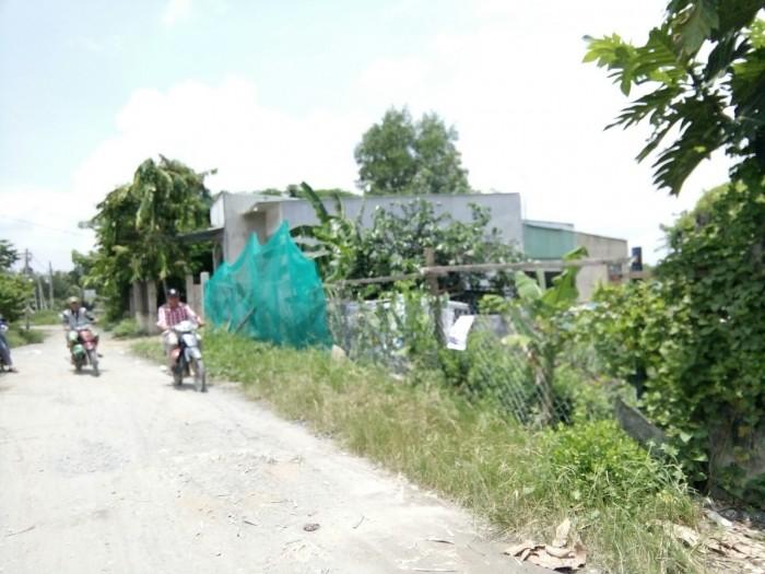 bán đất 300m2 (18×17), đường vào 6M,xã Nhơn Đức, huyện Nhà Bè,  giá 1.65 tỉ,shr
