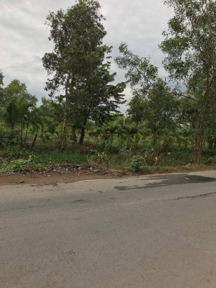 Bán đất củ chi xã Bình Mỹ MT Võ Văn Bích ,DT,5678m2