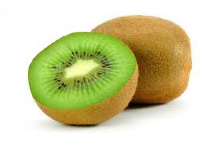 Cây giống kiwi, giống cây kiwi, cây kiwi nhập khẩu, chuẩn giống, số lượng lớn.4