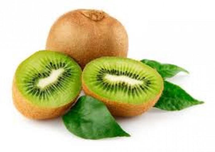 Cây giống kiwi, giống cây kiwi, cây kiwi nhập khẩu, chuẩn giống, số lượng lớn.5