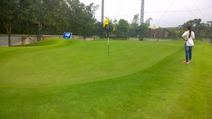 Thanh lý cỏ golf nhân tạo cao cấp giải phóng kho