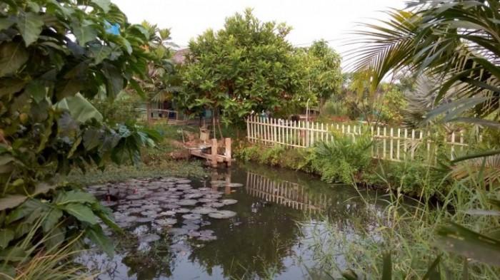 Bán đất vườn giá rẻ ở X.Tân Thạnh Đông, H.Củ Chi-DT:2800m2