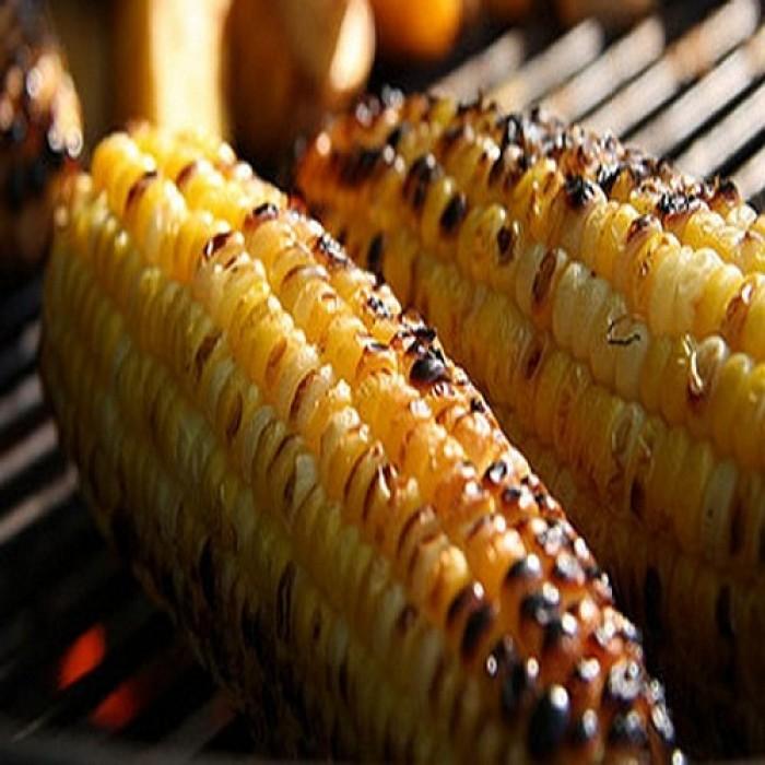 Bếp nướng inox dùng ngoài trời Landmann 11285, bếp nướng gia đình Việt3