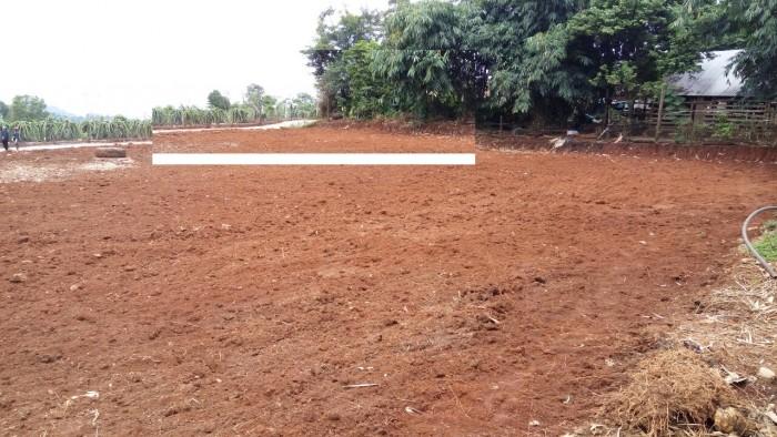 Bán đất dự án tiềm năng tại xã cư ebur