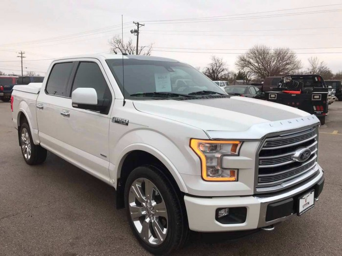Ford Khác sản xuất năm 2015 Số tự động Động cơ Xăng