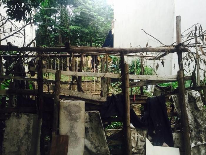 Bán đất ngõ 210 Đức Giang, tổ 18 Thượng Thanh, diện tích 99m giá rẻ.