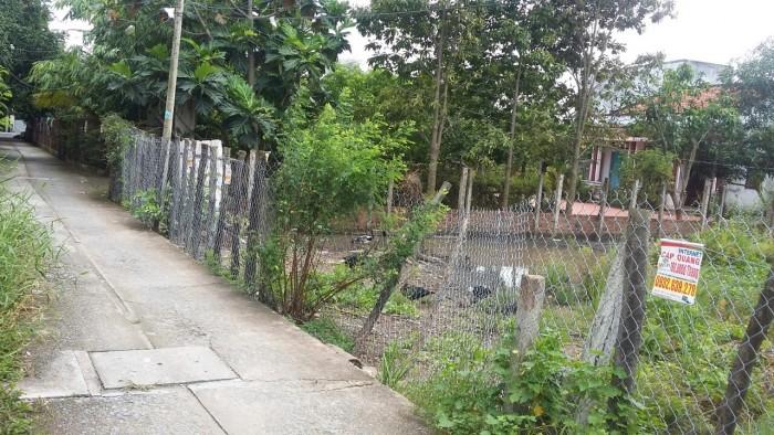 Cần bán gấp Đất Bình Chánh 350m2, MẶt Tiền đường Tân Liễu, Xã Hưng Long