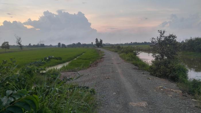 Bán Gấp 1 Lô Đất Nông Nghiệp Huyện Hóc Môn 9300m2