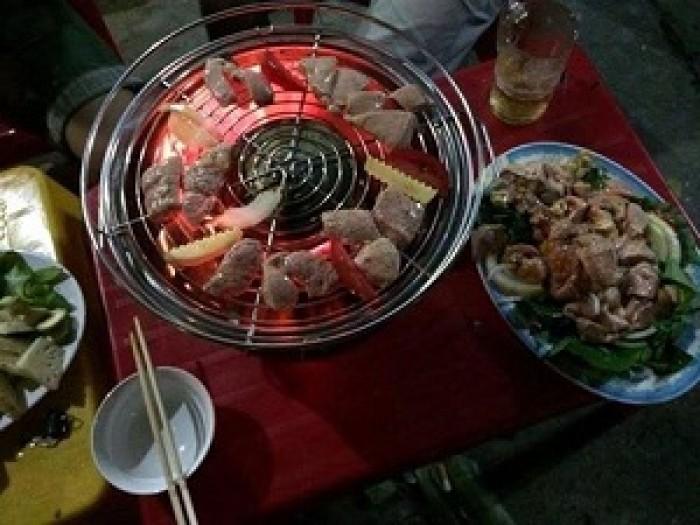 Bếp nướng không khói cắm điện trực tiếp, bếp nướng Nam Hồng BN300 xuất khẩu6