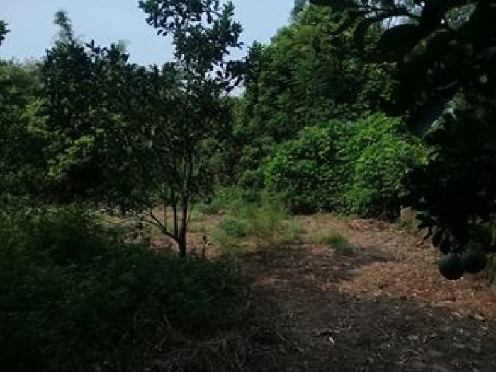 Đất phân lô nằm trong khu vưc xã Ngọc Thuy - Gia Lâm - Long Biên