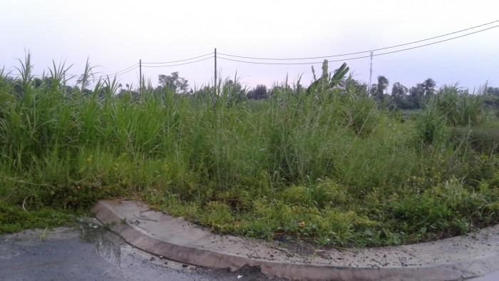 Bán đất nền, đất thổ cư giá rẻ đường Tx38 Hà Huy Giáp Q,12