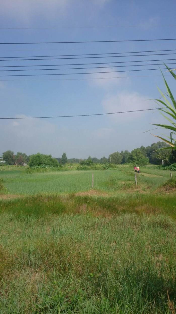 Cần bán đất nông nghiệp mt tl 15, dt: 3000m2, giá 12 tỷ, shr