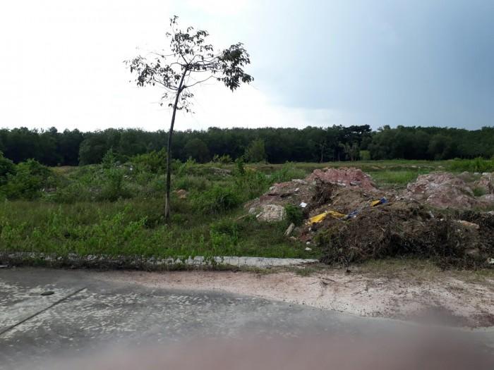 Dãy trọ và 300m2 đất ngay KCN Mỹ Phước