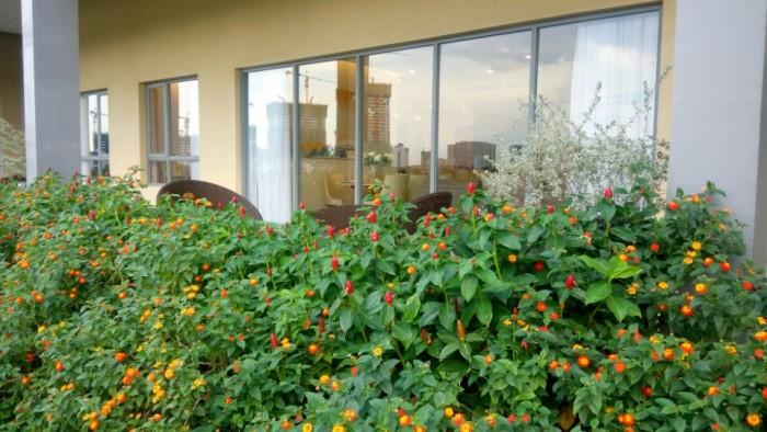 Biệt thự Pool Villa Đảo Kim Cương Q2 363m2, sân vườn 275 m2, 1 trệt, 1 lầu, mặt tiền sông Sài Gòn