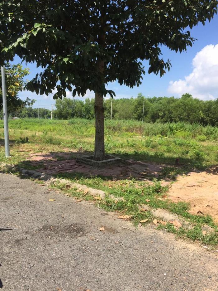 Bán đất nền dự án Barimex phường Long tâm, Bà rịa cách bệnh viện bà rịa 200m