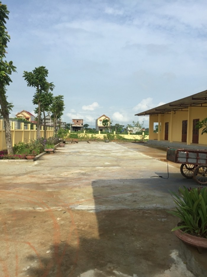 Cho thuê đất làm xưởng 2500m2 tại Thọ Xuân Thanh Hóa có nhà VP, bảo vệ, khách, giá rẻ