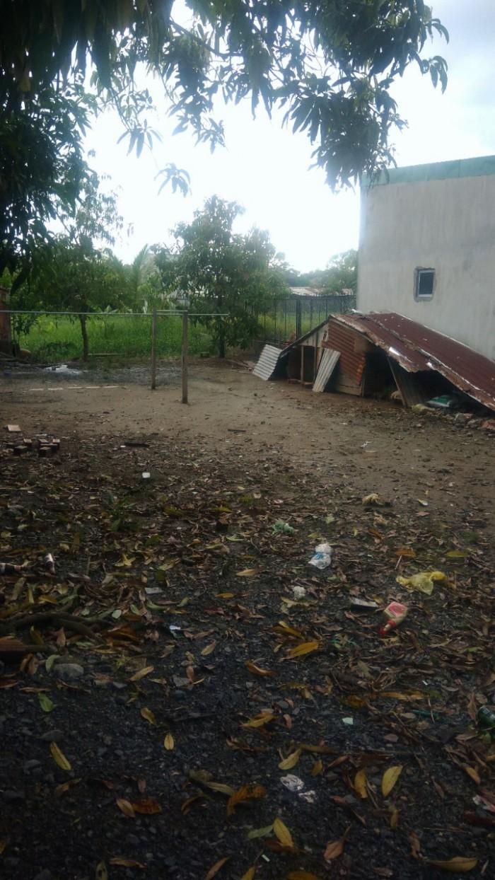 Cần bán 1355m2 đất ngay mặt tiền Liên ấp 4-5 xã Đa Phước, Huyện Bình Chánh