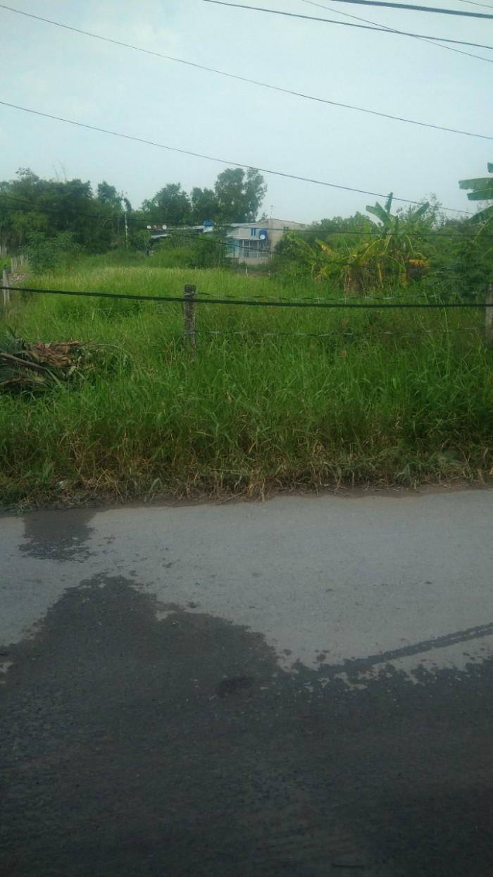 Bán 1268m2 đất, đường nhánh Quy Đức, Bình Chánh.