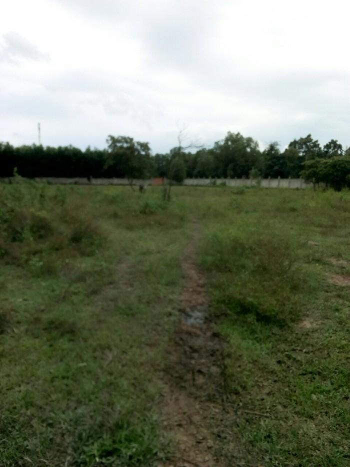 Cần bán gấp đất vườn MT 5m đường, Xã Phú Thạnh, Nhơn Trạch, Đồng Nai.
