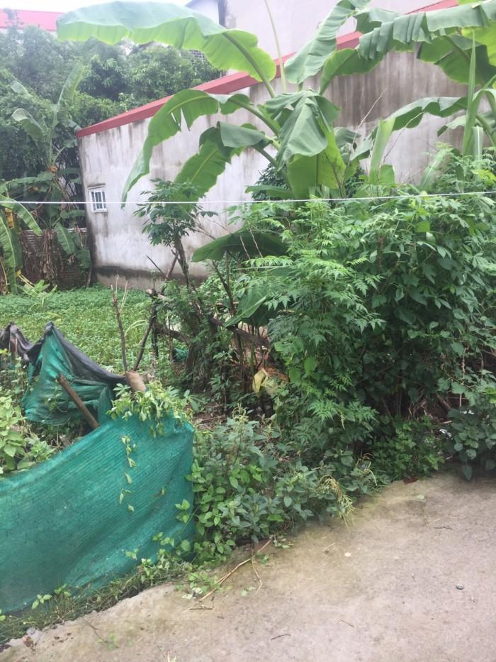 Bán 33.32m2 đất tại tổ 5 Yên Nghĩa – Quận Hà Đông – Hà Nội