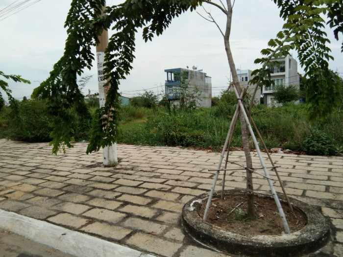 5x20 đất mt đường Ngô Đức Kế có SHR XDTD