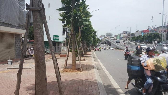 Bán nhà Lô góc Mặt phố Trần Khát Chân kéo dài, 31m2