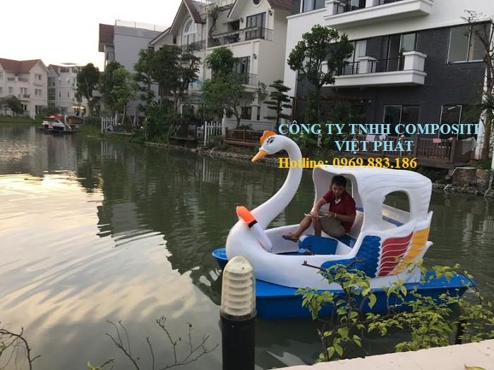 Thiên nga đạp nước: được thả tại các hồ lớn , khu vui chơi giải trí6