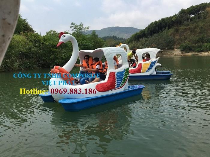 Thiên nga đạp nước: Tại công viên di sản tiến sĩ Việt Nam2
