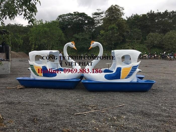 Thiên nga đạp nước : Tại Hồ Hòa Bình0