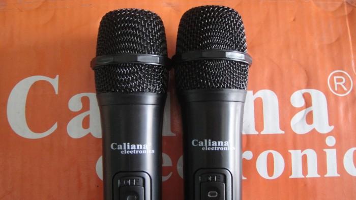 Loa kéo Caliana TO 12B kèm theo 2 micro hát hay, không hú hí , rè tiếng4