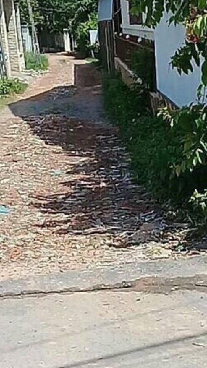 Bán đất Hiệp Thành gần nhà thờ Chánh Thiện tp TDm