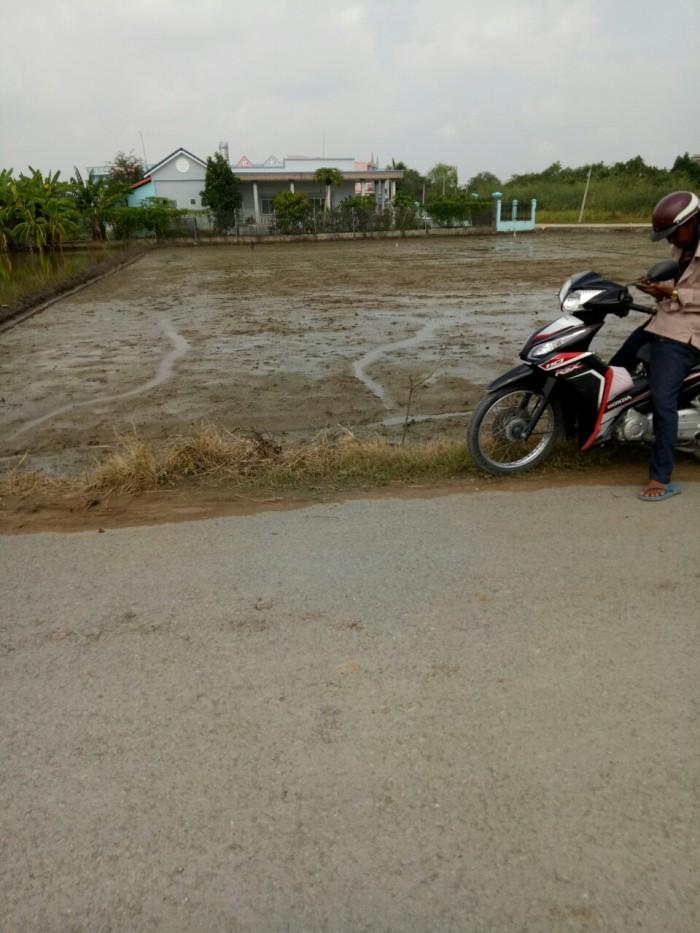 2100m2 đất mặt tiền đường Võ Văn Thu, xã Hưng Log, huyện Bình Chánh.