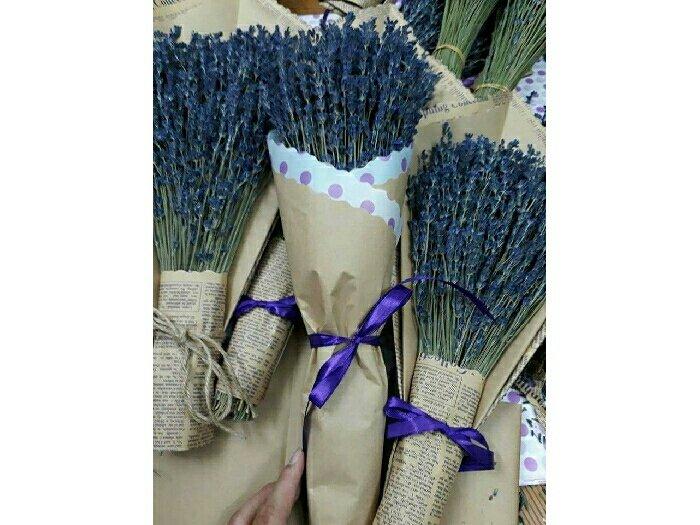 Hoa khô lavender Pháp0